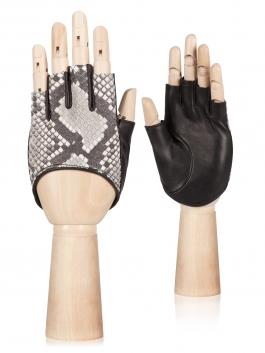 Fashion перчатки ELEGANZZA (Элеганза) IS02003 Черный фото №1 01-00026382